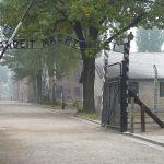 Auschwitz, la porte
